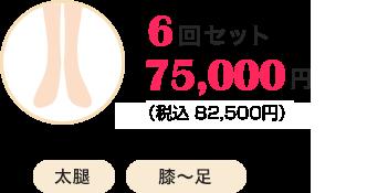 6回セット75,000円